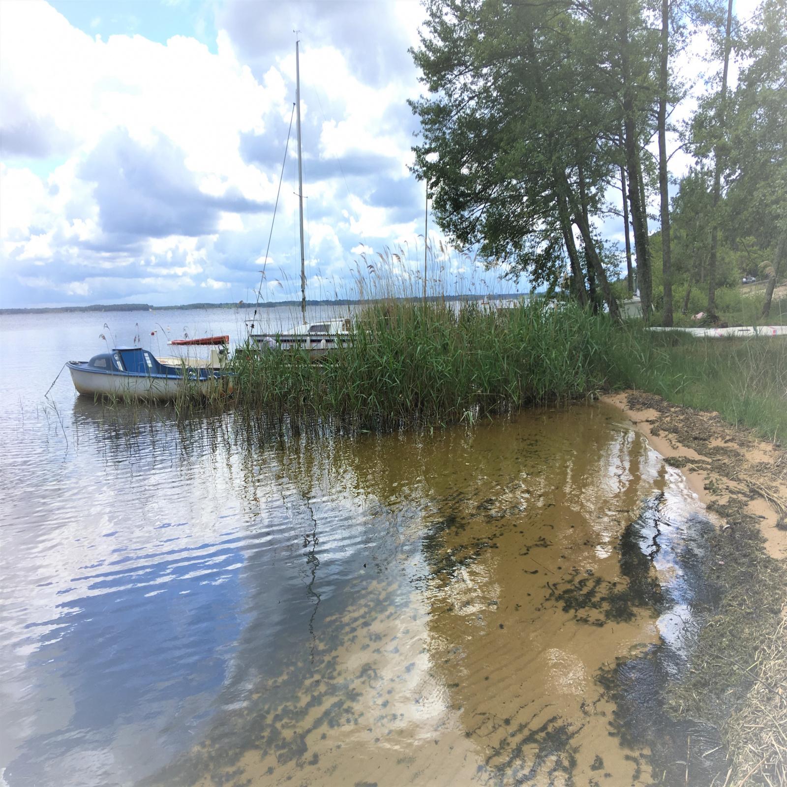 Image_3, Maison, Lacanau ocean, ref :191899