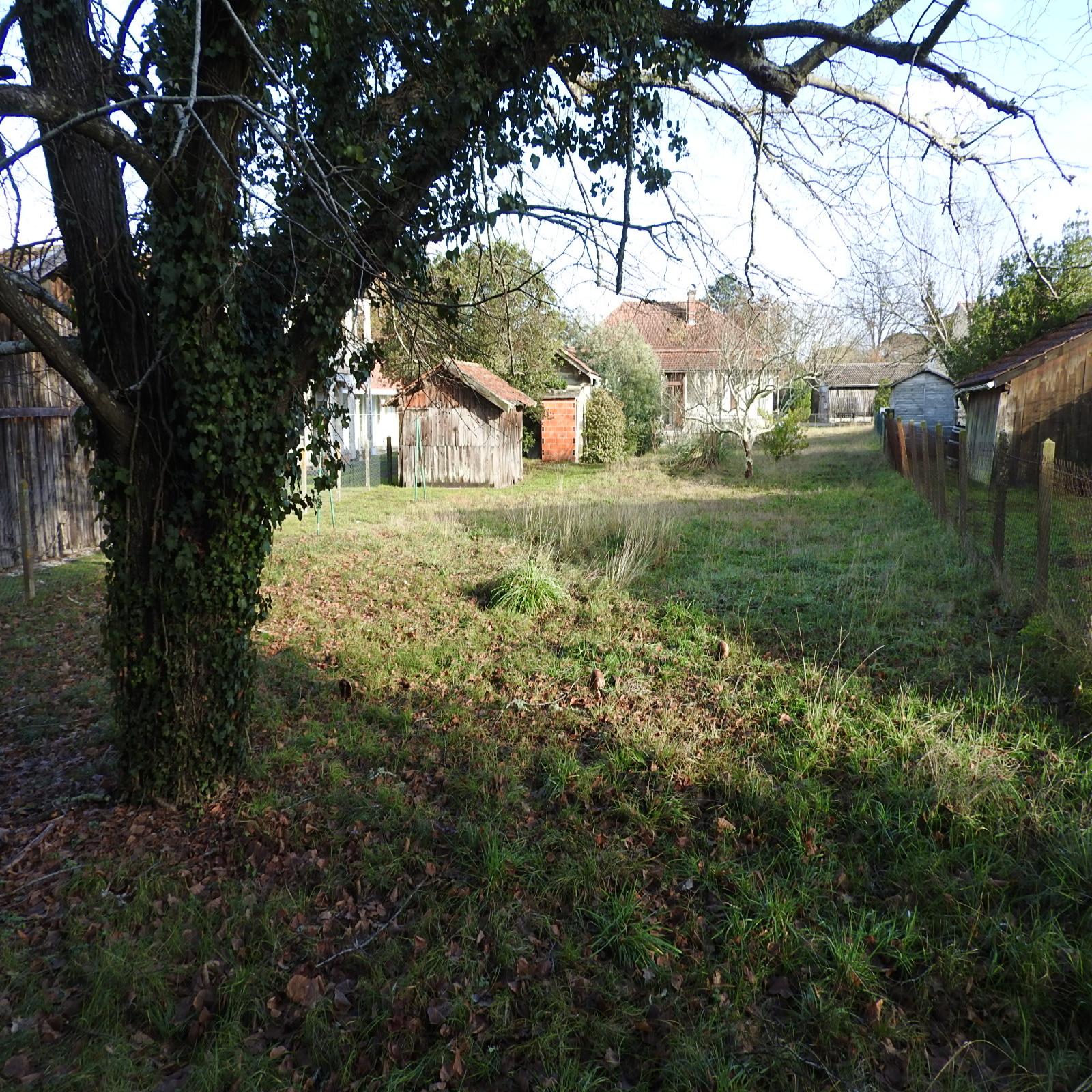 Image_2, Maison, Lacanau, ref :181803