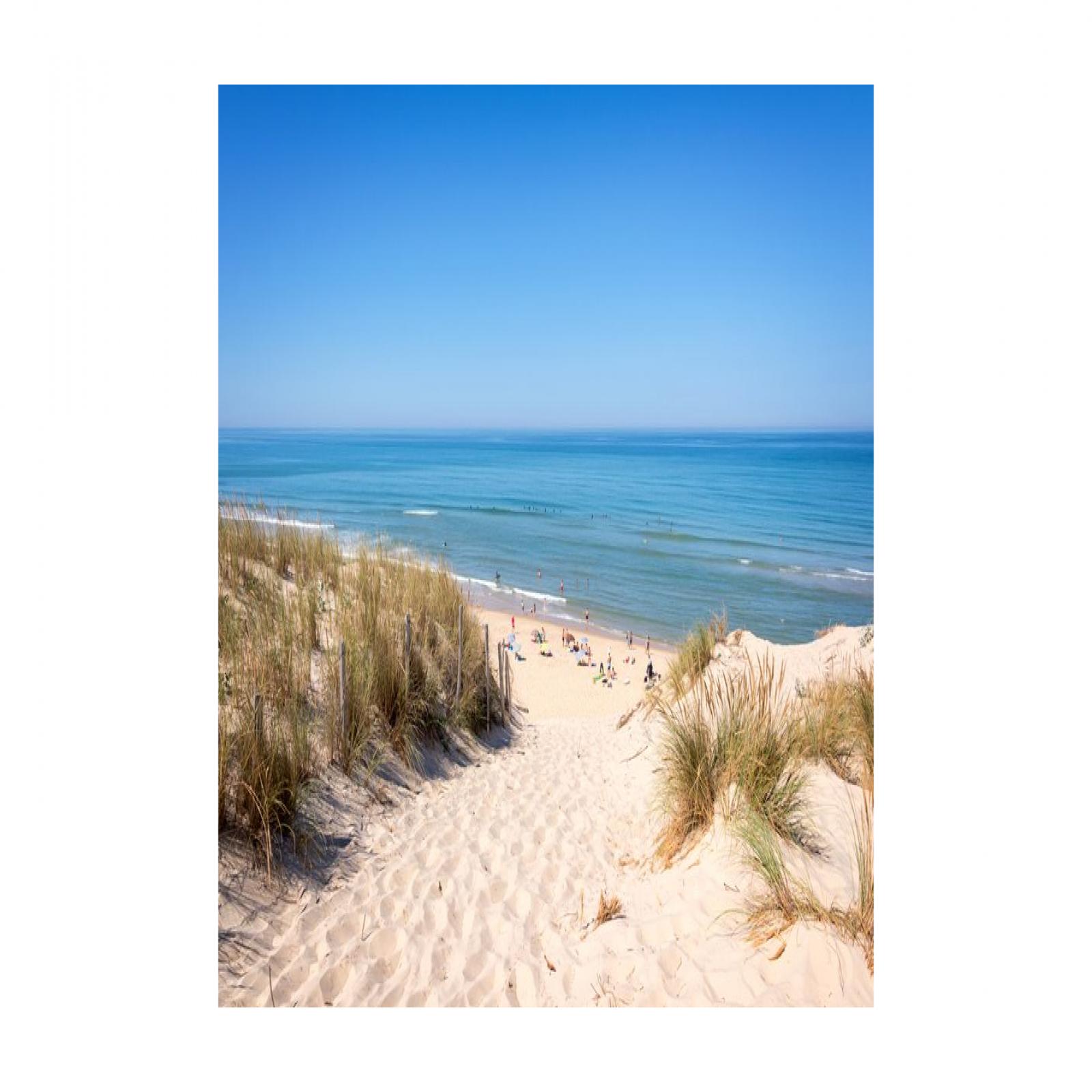 Image_3, Maison, Lacanau ocean, ref :2019