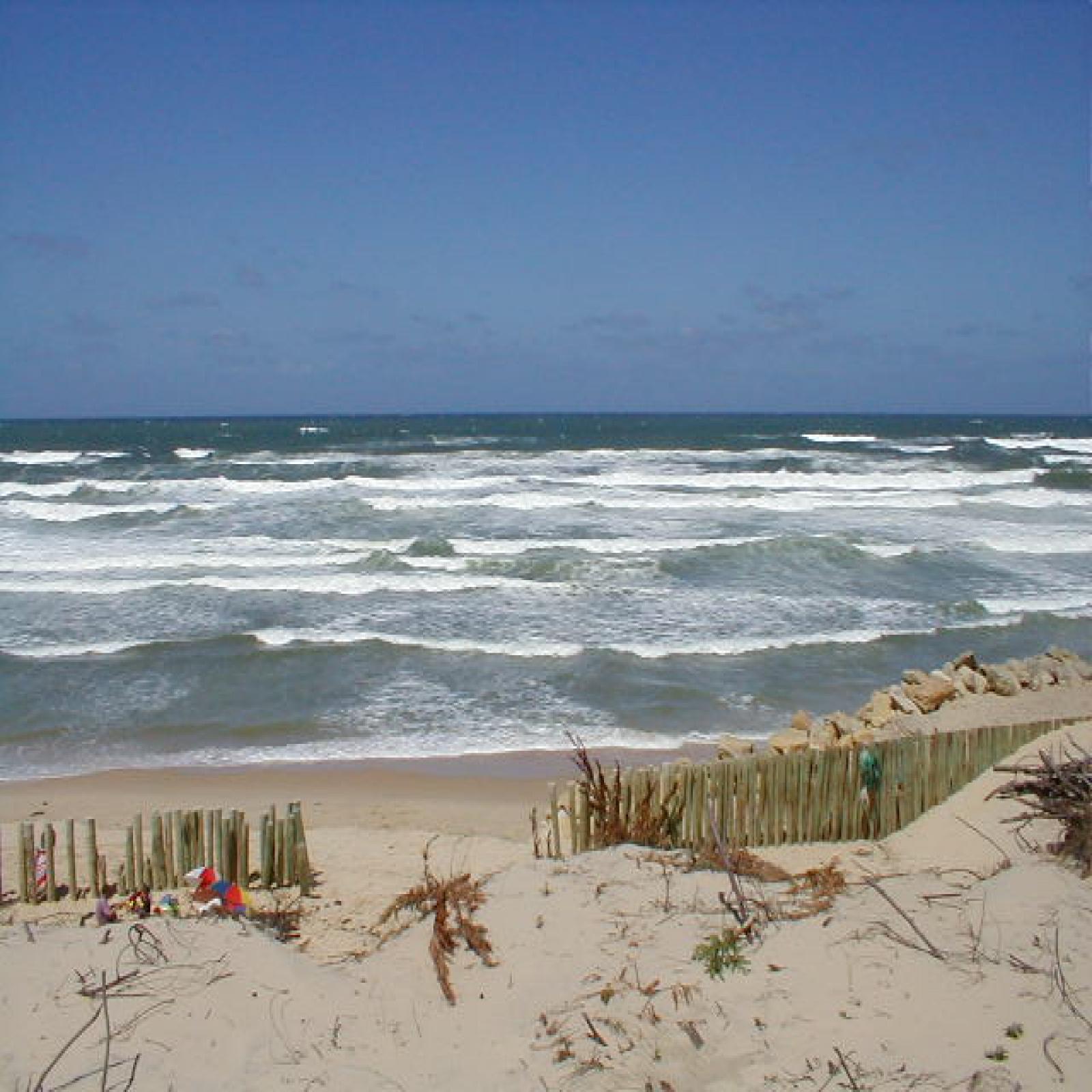 Image_3, Maison, Lacanau ocean, ref :18359
