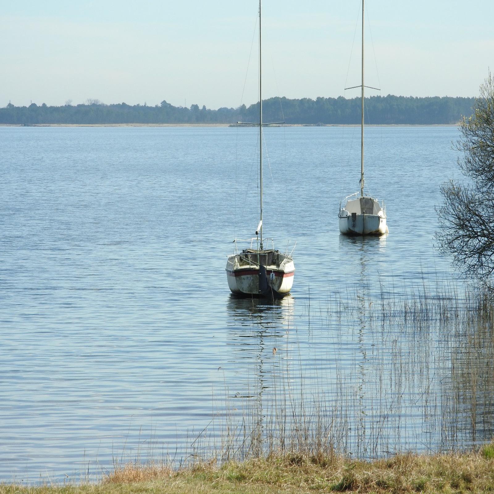 Image_9, Maison, Lacanau ocean, ref :99056